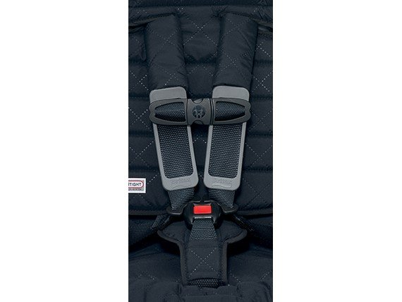 Britax Harness & Buckle Set